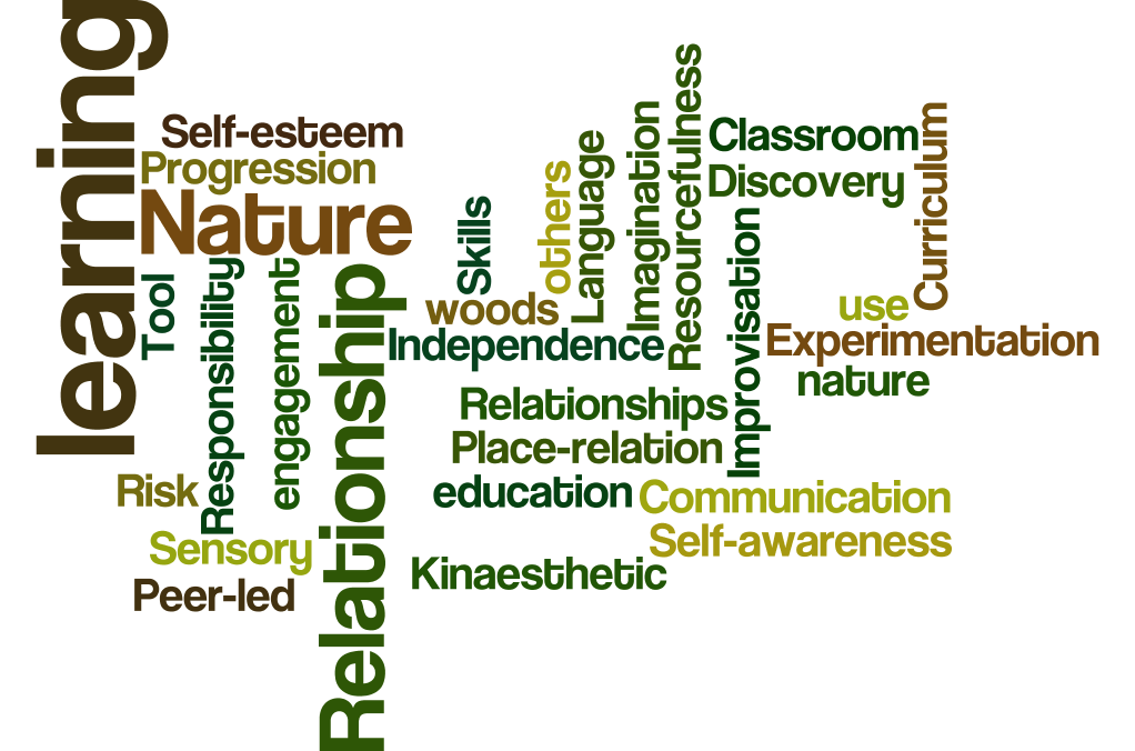 nature of learning blog wordle